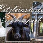 Impressionen vom Pötzleinsdorfer Schlosspark