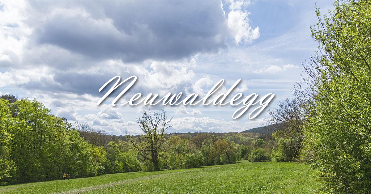Neuwaldegg