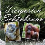 Impressionen vom Tiergarten Schönbrunn